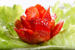 Rose from strawberry on a green lettuce leaf. Close up, handwork, small depth of sharpness Royalty Free Stock Image
