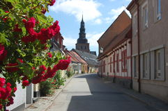 The rose street. The city Ystad has a lot of roses in the old town Royalty Free Stock Photos