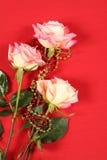 Rose su colore rosso Fotografia Stock
