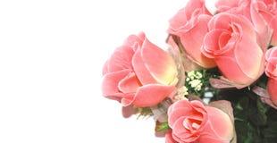 Rose su priorità bassa bianca Immagini Stock