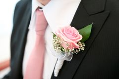 Rose on the suit Royalty Free Stock Photography