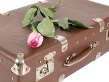 Rose on suitcase Stock Photos