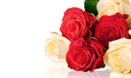 Rose sullo scrittorio fotografia stock