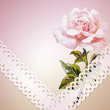 Rose. Summer flowers invitation Stock Images