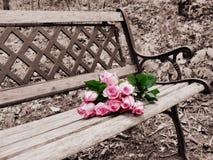 Rose sur la couleur sélective de banc Images stock