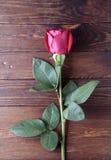 Rose sur la vieille table en bois rustique Photographie stock libre de droits