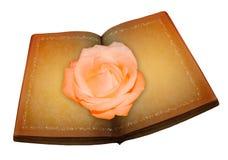 Rose sur le livre Photographie stock
