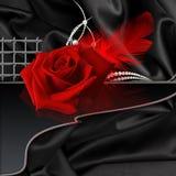 Rose sur le noir Photographie stock libre de droits