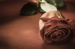 Rose sur le tissu de satin - vintage Photo libre de droits