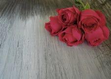 Rose sur le vieux bois de grange Images stock