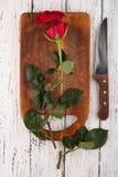 Rose sur les conseils Photo libre de droits