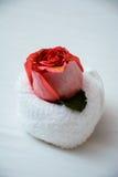 Rose sur roulé vers le haut de la serviette sur le lit Photographie stock libre de droits