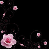 Rose and swirls vector stock illustration