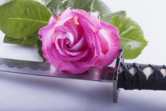 Rose and sword Stock Photography
