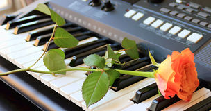 Rose on a synthesizer Royalty Free Stock Photography