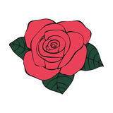 Rose in tattoo style Royalty Free Stock Photography