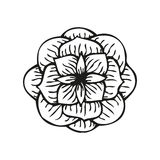 Rose in tattoo style, hand drawn flower Royalty Free Stock Photo