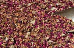 Rose Tea Imágenes de archivo libres de regalías