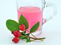 rose tea för höft Royaltyfri Foto
