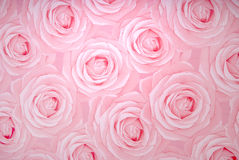 Rose texture Royalty Free Stock Image