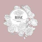 Rose Themed Vintage Sketch Images libres de droits
