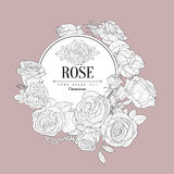Rose Themed Vintage Sketch Royalty Free Stock Images