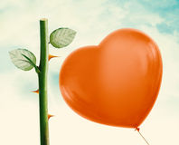 Rose thorn and Red Balloon Stock Images