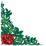 Rose and Thorns Border. Border design with rose and thorns theme Royalty Free Stock Photography
