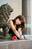 rose thoughtful woman young 免版税库存图片