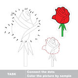 Rose to be traced. Vector numbers game. Stock Photography