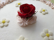 Rose. On top of a cake Stock Photography