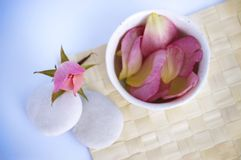 Rose Tranquility. Spa tranquility. Rose bud and petals with pebbles and cup on a cane mat Royalty Free Stock Image