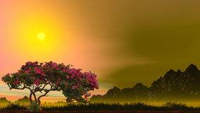 Rose tree. 3d image with sunset and rose tree Stock Image