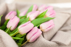 Rose tulip bouquet Royalty Free Stock Photography