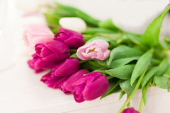 Rose tulip among pink tulips, selective focus Royalty Free Stock Photo