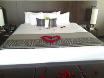 Rose Turndown Service At Talking-Stoktoevlucht in Scottsdale, AZ Royalty-vrije Stock Afbeelding