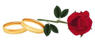 Rose and two wedding rings. Royalty Free Stock Photo
