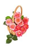 Rose in un cestino. fotografie stock libere da diritti