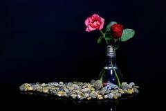 Rose in un vaso con un pesce Immagine Stock Libera da Diritti