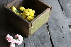 Rose in una scatola di legno Fotografia Stock