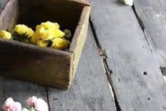 Rose in una scatola di legno Immagini Stock Libere da Diritti