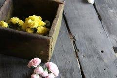 Rose in una scatola di legno Fotografie Stock Libere da Diritti