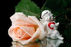 Rose und Amor. Lizenzfreie Stockfotografie