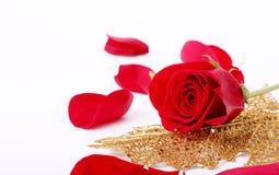 Rose und Blatt Stockfoto