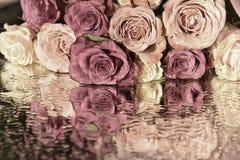 Rose und die Reflexion auf der Oberfläche Lizenzfreie Stockfotografie