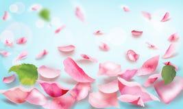 Rose und fallende Romanze Leerseite der Blumenblätter lizenzfreies stockbild