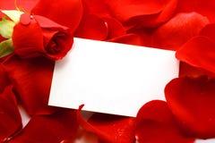 Rose und Meldung auf Blumenblätter. Hintergrund Lizenzfreie Stockfotografie