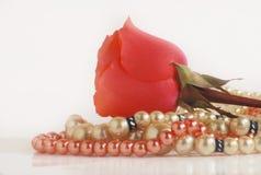 Rose und Perlen Stockfotografie