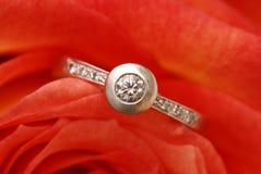 Rose und Ring stockbilder