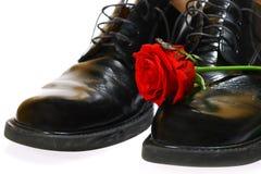 Rose und Schuhe Stockbild